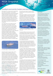 Issue 1/2012 - unravelling the social life of dolphins
