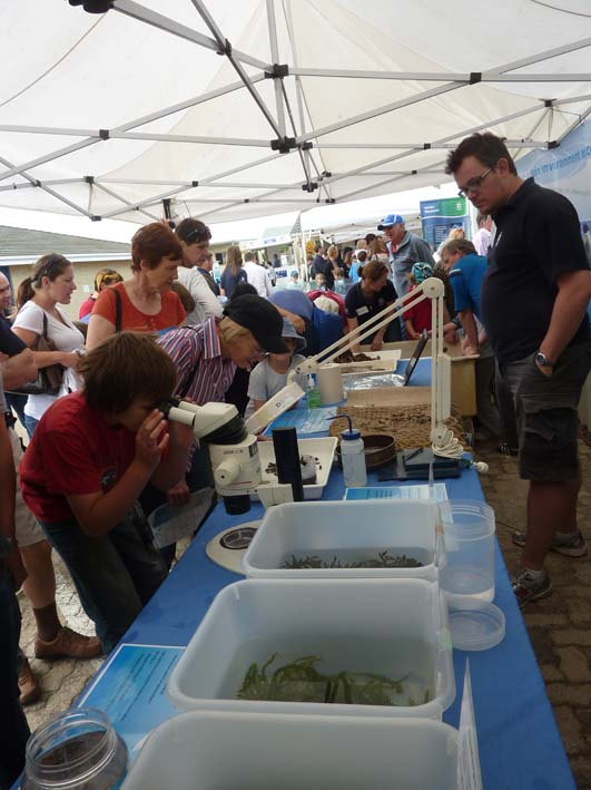 Displays at SARDI Aquatic Sciences Open Day